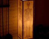 Table Lamp, Accent Lamp, Human Skeleton, Paper Lamp, Medical Chart, Anatomy