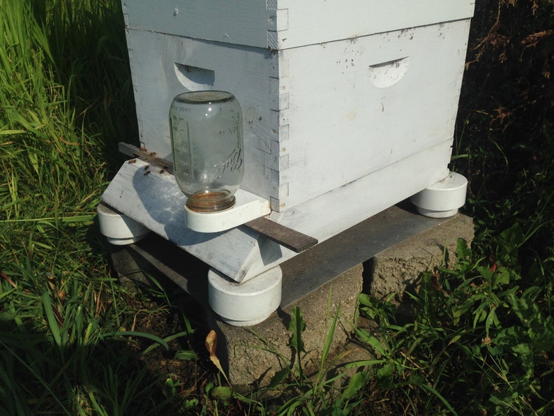 Plans for Ant Guards