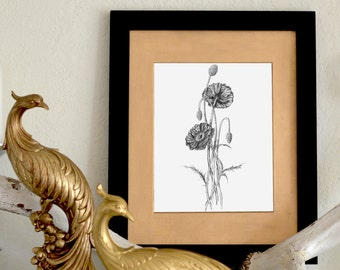 "Poppies Floral Freehand Ink Drawing Limited Edition Print, Signed, Numbered 8"" x 10"""