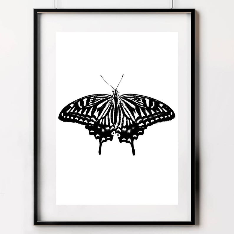 e77a815c7 Butterfly Print Black and White Butterfly Poster Butterfly | Etsy
