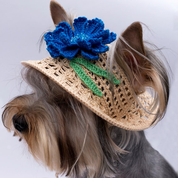 30bc5a049a1c4 Sombreros del Knit del sombrero para perro Aciano