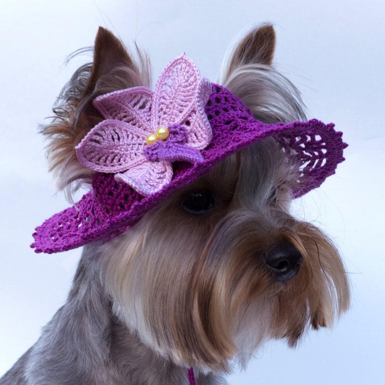 Sombrero para perro Orquídea perro sol sombreros  85341e680ec
