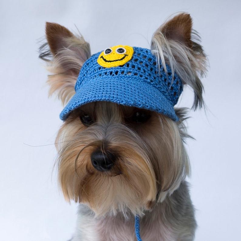 Dog's Baseball Cap