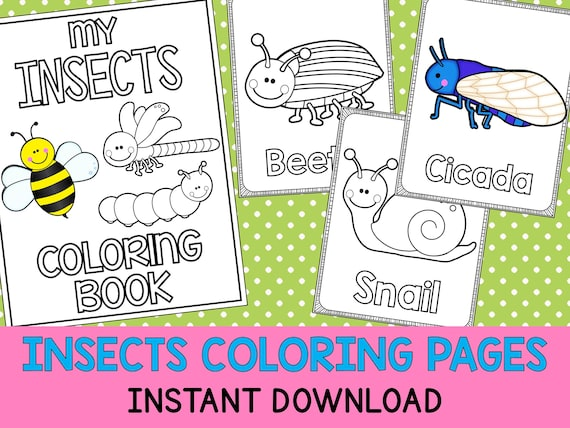 10 Best Insects Coloring Pages images   Insect coloring pages ...   428x570