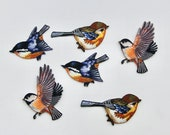 Garden Bird Motifs/Patches -- High Quality with Embroidery Stitching