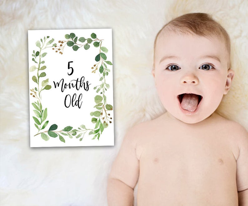 picture relating to Printable Baby Month Signs named Little one Thirty day period Playing cards, Boy or girl Milestone Playing cards, Printable Youngster Playing cards, Youngster Signs or symptoms, Greenery Milestone Print, Watercolor Milestone, Boy or girl Thirty day period Indications