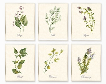 Botanical Print, Botanical Print Sets, Herb Prints, Herb Printables, Botanical Wall Art, Botanical Decor, Herb Wall Art, Botanical Set of 6