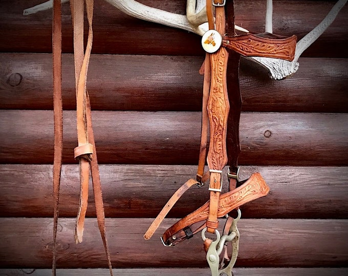Vintage horse bridle with antique glass rosettes, leather carved brow band and nose band, horse head tooled leather, cavesson, western retro