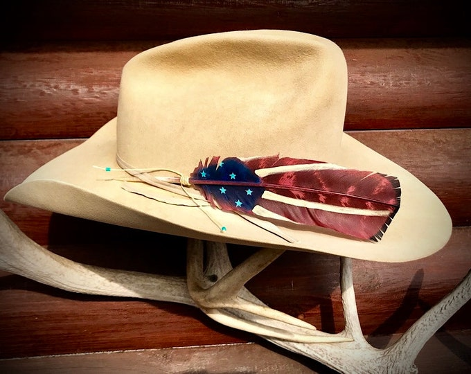 American hat feather, rustic, western retro cowboy hat feather, hand painted on a trimmed medium wild turkey wing, red, blue, turquoise, art