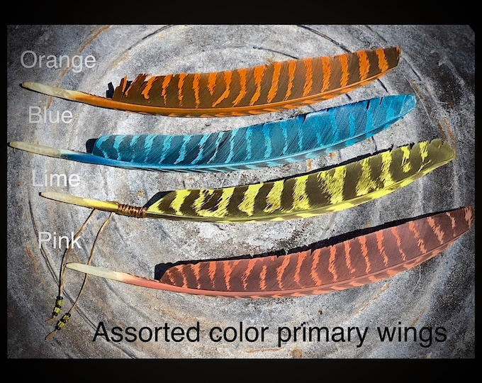 Hat feathers, assorted colors of painted wild turkey primary wings, orang, blue, Lime, pink, more colors available by request, wind ties