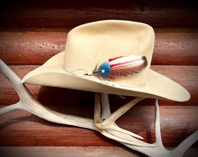Western retro cowboy hat feather, American hat feather, rustic, rare mini covert wild turkey feather, natural hand painted hat feather art