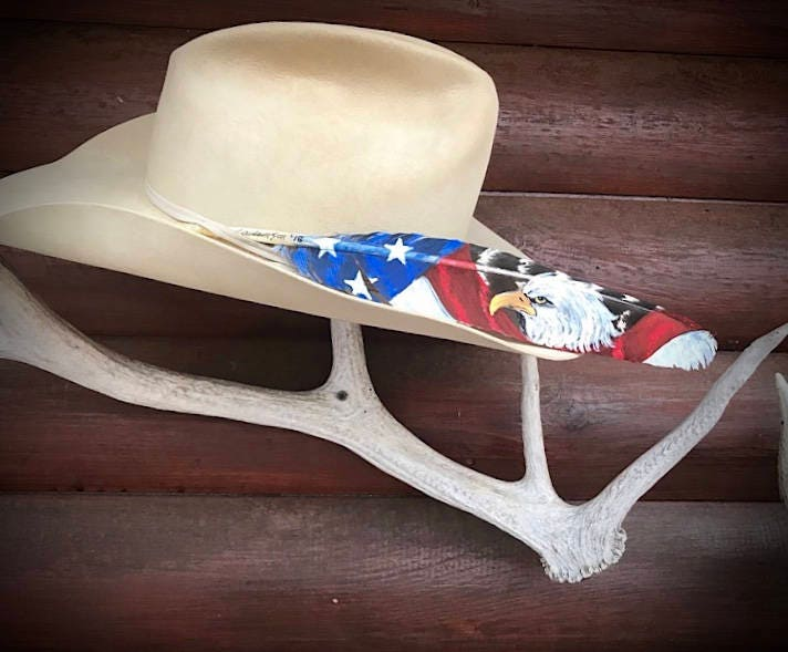 ab38febc American hat feather, custom hand painted cowboy hat feather ...