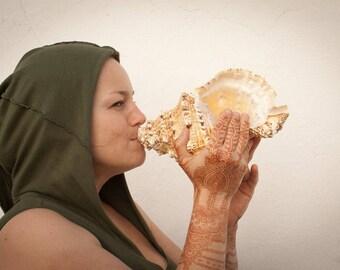 Conch-shell-horn (trumpet, dunkar)