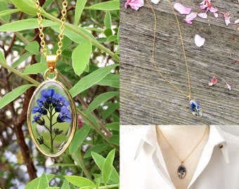 Forget me not necklace, forget me not gold necklace, dried flowers necklace, gift for women, gift for her, real flower pendant
