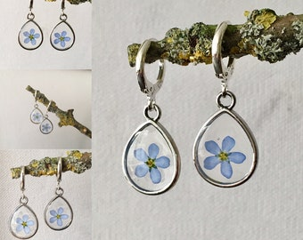 forget me not, real forget me not, dried flowers, forget me not earrings 925 sterling Silver, forgetmenot,