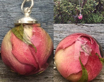 Rose bud necklace, real flowers necklace, rosebud,925 Sterling Silver necklace,