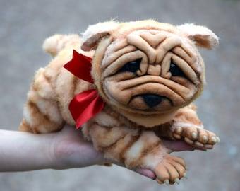 Shar Pei Wrinkles Dog
