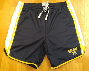 bc44155814 Ecko Unltd shorts, vintage basketball blue baggy shorts, 90s hip-hop  clothing, 1990s hip hop shirt old school streetwear OG rap size L W 32