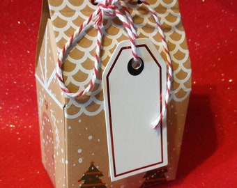 Christmas dog cookies. Wheat free mini selection box.