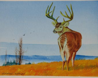 Deer watercolor painting, buck artwork, gift for outdoorsman, gift for hunter, original signed painting, #193
