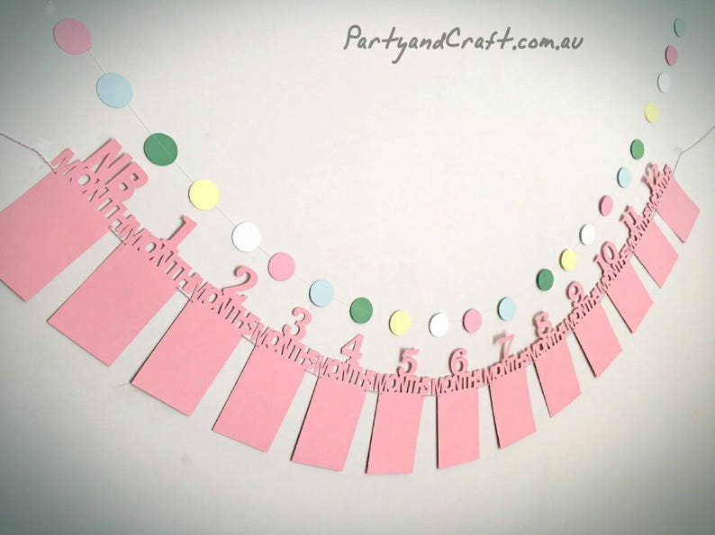 12 month photo banners photo probs monthly photo banner for 1st birthday party first birthday party decoration photo garlands,photo flag