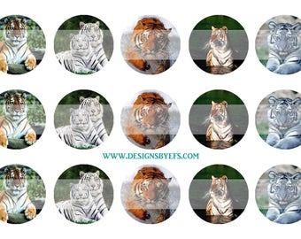 "Tiger Bottle Cap Collage Sheet 1"" Round Bottlecap, Instant Download, Digital Graphic"