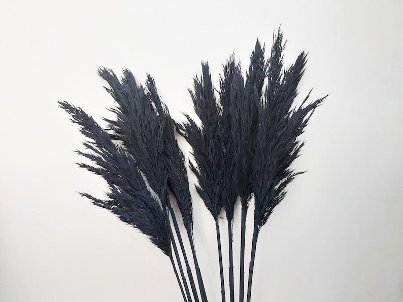 Black Bouquet Black Pampas Grass Decor Black Pampas Grass Decor Black Dried Vase Decor Black Pampas Grass Decor Pampas Grass Decor