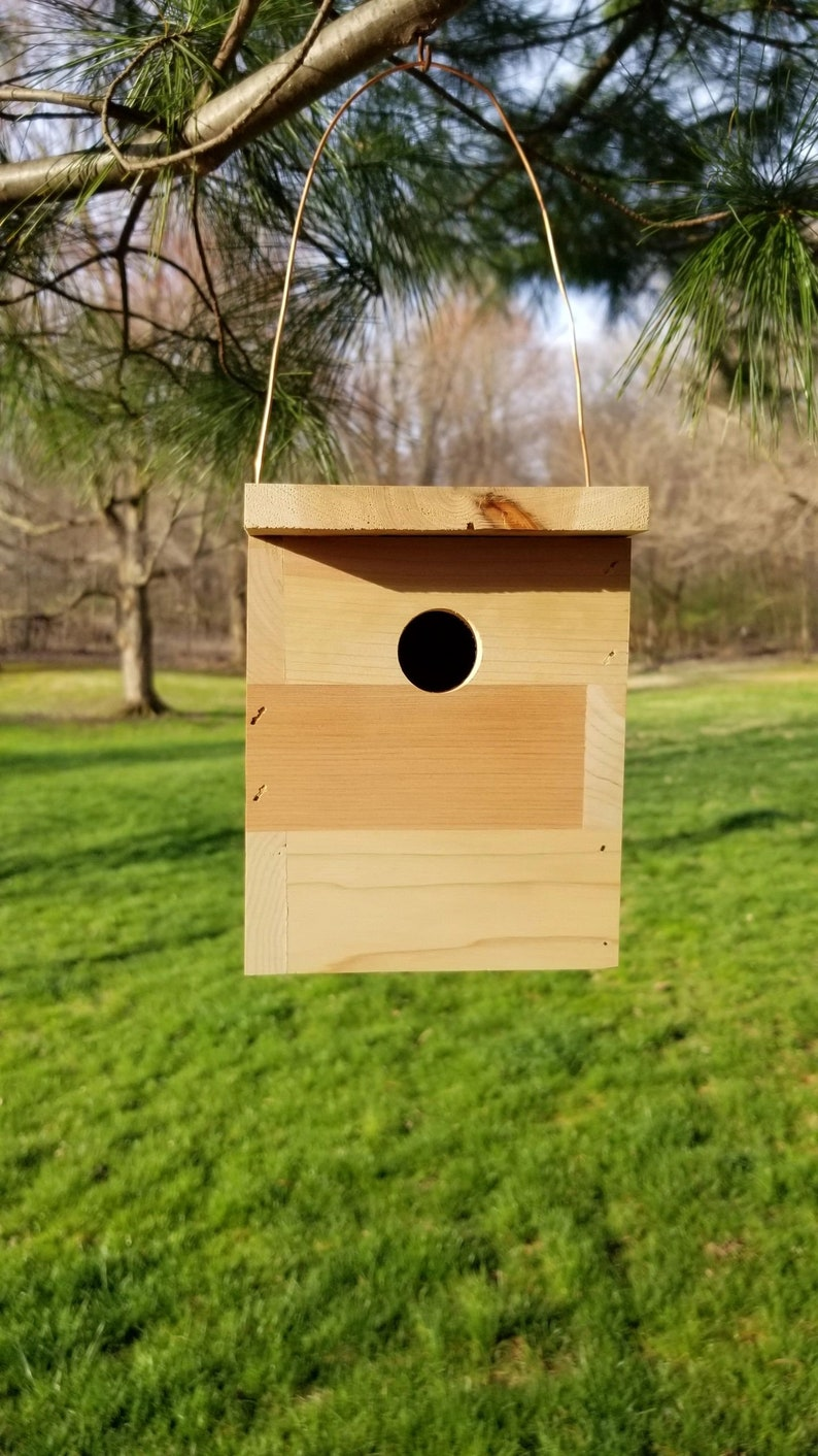 Hanging outdoor cedar birdhouse easy cleaning for year of use. image 0