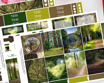 Life's Reflection | Planner Sticker Kit for Erin Condren | Weekly Kit, Vertical Planner, Outdoors, Trees, Nature, Green, Brown, Woodland