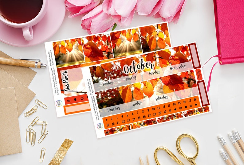 All of Fall Erin Condren Monthly View Planner Sticker Kit Any Oct/Sun