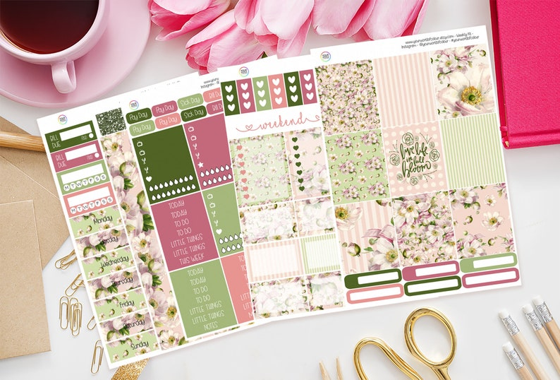 Live life in full bloom Planner Sticker Kit for use with Erin image 0