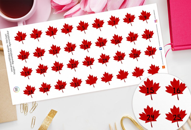 Maple Leaf Date Covers Planner Stickers for Erin Condren image 0