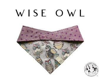 Wise Owl : Owls and Pink/Purple Dots Tie/On Reversible Dog Bandana