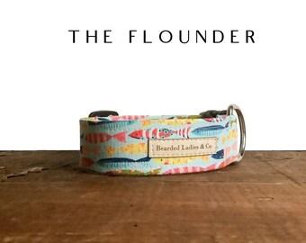 Tropical Fish Dog Collar // The Flounder : Multicolored Fish Dog Collar