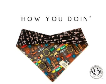 How You Doin' : Friends Central Perk Tie/On, Reversible Dog Bandana