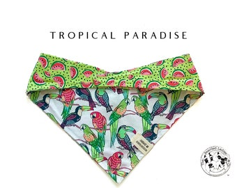 Tropical Paradise : Summer Tropical Birds with Neon Watermelons Tie/On, Reversible Dog Bandana