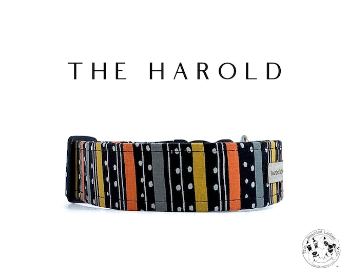 Featured listing image: The Harold : Halloween Stripe Dog Collar