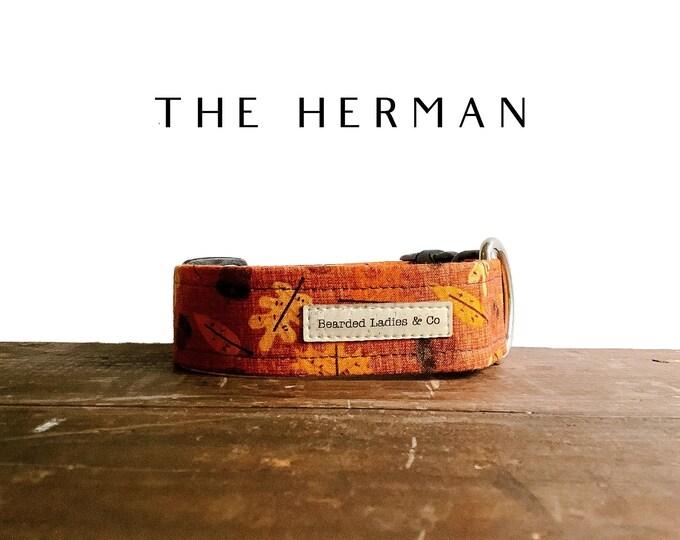 Featured listing image: Autumn Leaves & Acorns Dog Collar // The Herman : Burnt Orange Fall Dog Collar