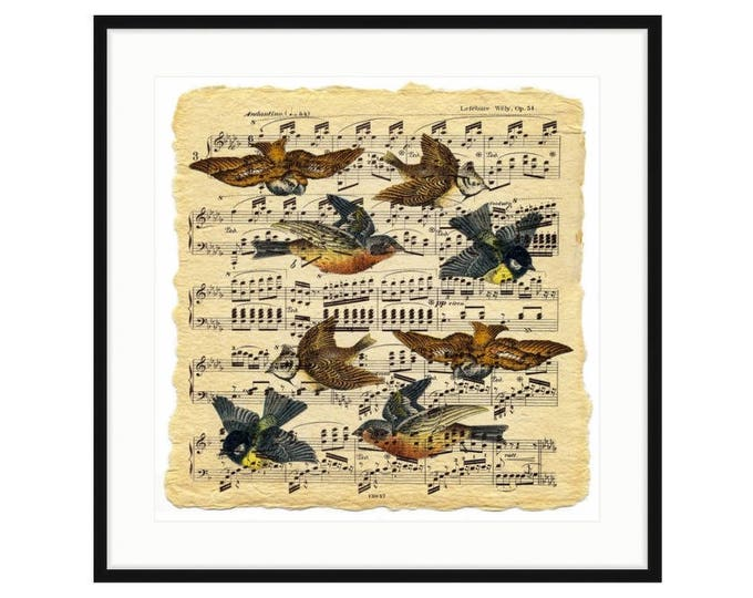 Musical Birds. Vintage birds frolic on an old sheet of musical notation. Framed print. Three sizes, two frame options. Free shipping.