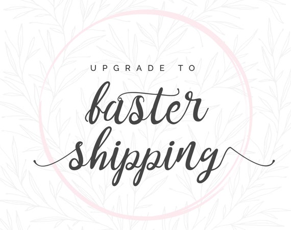 Fast Shipping Express Update 35USD