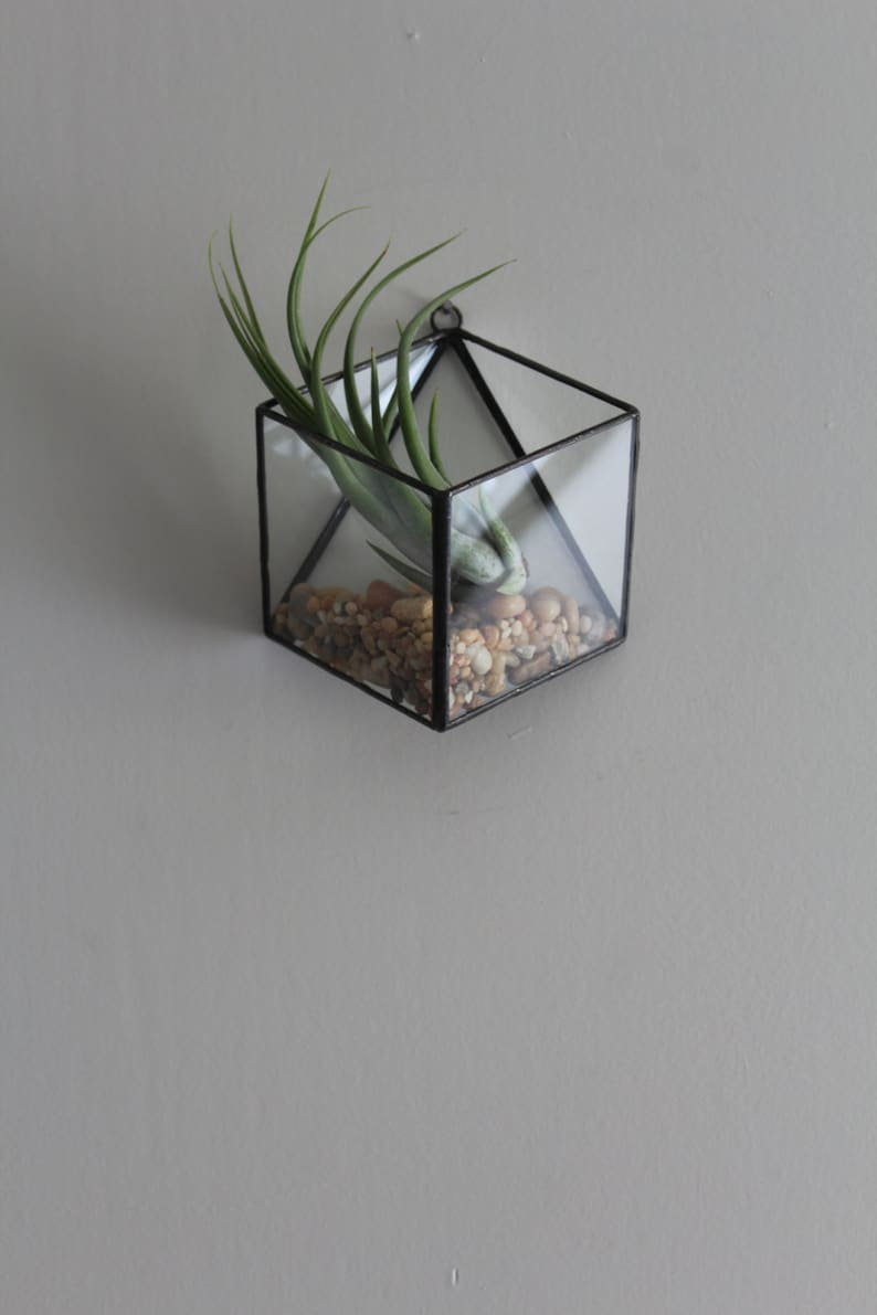 Small Hanging Terrarium Geometric Hanging Planter Wall Mounted Etsy