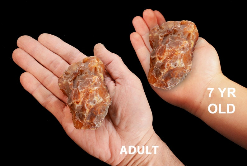 "Howlite Point 2 3//4/"" Rocks and Minerals Specimen Crown Chakra Healing Crystal"