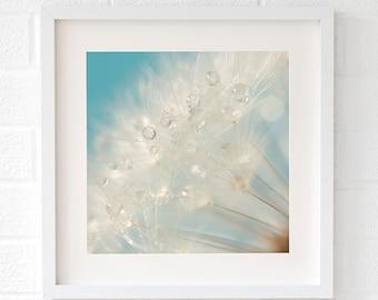 Dandelion print - Large blue bathroom wall art