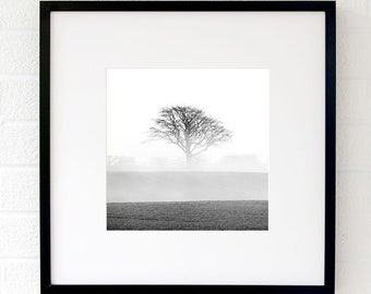 Black and white fine art photography - Misty tree wall art - Landscape photography