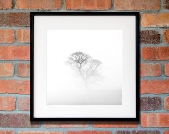 Black and white tree art - Large minimalist wall art - Monochrome tree print