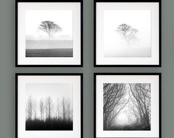 Set of four tree prints - Black and white tree photography