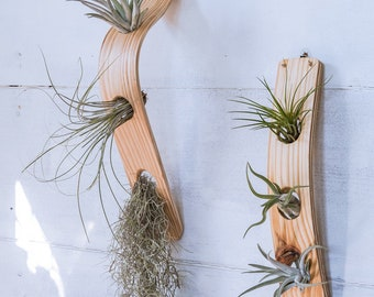 Large Vertical Air Plant combo, Air Plant Wall Display, Air Plant Holder Wall, Air Plant Hanger, Minimalist, Boho, Hanging Wall Planter