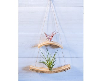 Mini Wave Double Air Plant Hanger, Air Plant Wall Display, Mini Wave, Air Plant Hanger, Mini Plant Hanger, Hanging Wall Planter