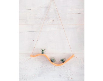 Small Wave Air Plant Hanger, Air Plant Display, Plant Hanger, Air Plant Holder, Air Plant Holder Wall ,Air Plant Wall Decor,Plant Display