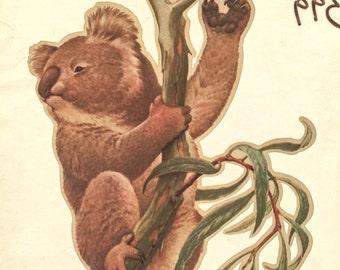 Koala Vintage Iron On Heat Transfer